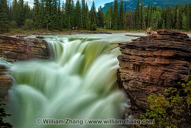 Powerful Athabasca Falls rages to canyon. Jasper National Park