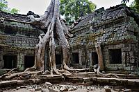 Temples of Angkor Other Te...