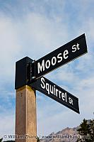 Moose and Squirrel streets in Banff. Alberta, Canada