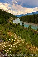 Morant's Curve of train tracks along Bow River. Banff, Alberta