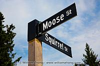 Moose and Squirrel, two cartoon streets in Banff. Alberta, Canad