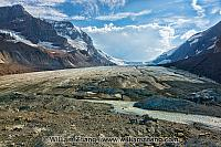 Athabasca Glacier fills gap at Columbia Icefi