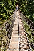 Lynn Canyon suspension bridge in North Vancouver. BC, Canada