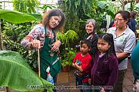 Guide explaining at Conservatory of Flowers. San Francisco, CA